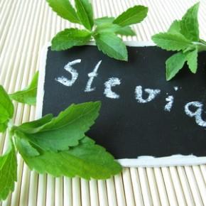 stevia die s e wunderwaffe aus der natur. Black Bedroom Furniture Sets. Home Design Ideas
