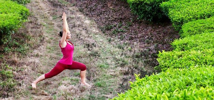 yoga Archives - Seite 7 von 7 - gesundheit-blog.at