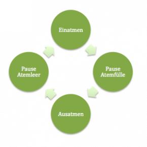 Die vier Atemphasen