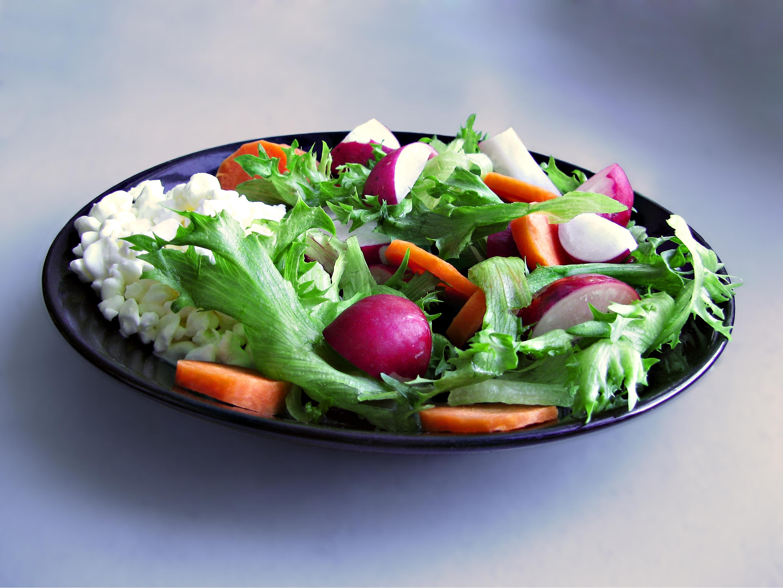 Fett Diät Blog