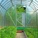 Der Glashauseffekt – so werden Gärtner ganzjährig glücklich