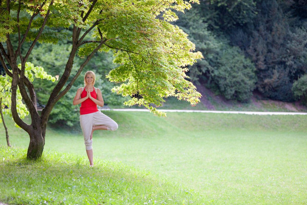 Baum Yoga Frühling