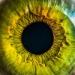 Sehkraft stärken Augenyoga