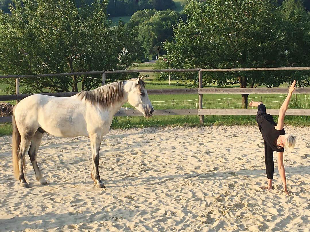 Yoga mit Pferd